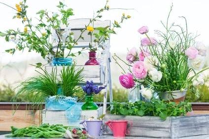 Blumentreppe Dekoration